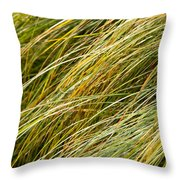 Flowing Green Grass  Abstract Throw Pillow