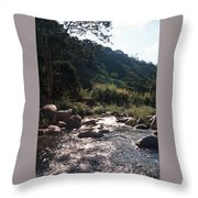 Flowing Nature Throw Pillow