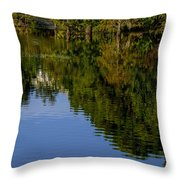 Flowing Reflection Throw Pillow