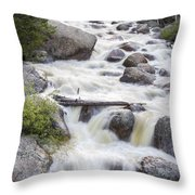 Flowing River #1 Throw Pillow