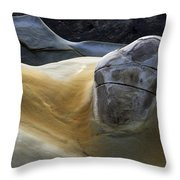 Flowing Rock 3 Throw Pillow