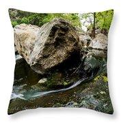 Flowing Stream Throw Pillow