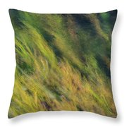 Flowing Textures Throw Pillow