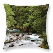 Flowing Through The Trees Throw Pillow