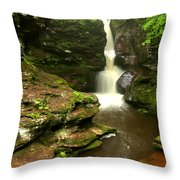 Flowing Toward The Red Rocks Throw Pillow