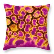 Flu Virus Tem Throw Pillow by Science Source