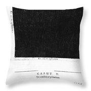 Fludds Dark Universe, 1617 Throw Pillow