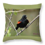 Fluffed Red-winged Blackbird Throw Pillow