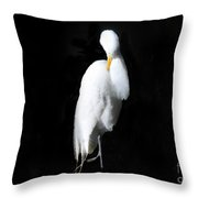 Fluffing Throw Pillow