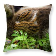 Fluffy As A Duck Throw Pillow