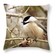 Fluffy Chickadee Throw Pillow