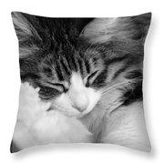 Fluffy Comfort Throw Pillow