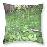 Fluffy Ferns Throw Pillow