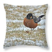Fluffy Robin In Snow Throw Pillow
