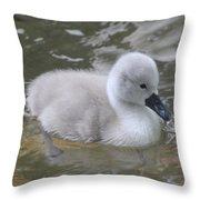 Fluffy Signet Throw Pillow