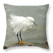 Fluffy Snowy Egret Throw Pillow