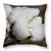 Fluffy White Alabama Cotton Throw Pillow