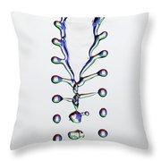 Fluid Fishbone Effect Throw Pillow