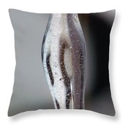 Fluidity II Throw Pillow