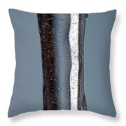 Fluidity Throw Pillow