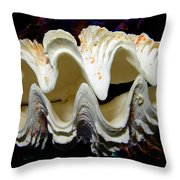 Fluted Giant Clam Shell Throw Pillow