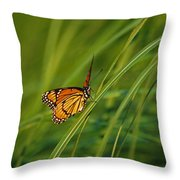 Fluttering Through The Summer Grass Throw Pillow