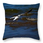 Fly Away Throw Pillow by Amanda Struz