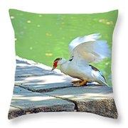 Fly Away Duck Throw Pillow