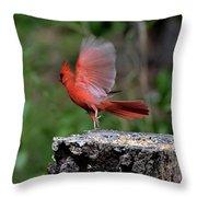 Fly Birds 318 Throw Pillow