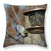 Fly Birds 326 Throw Pillow