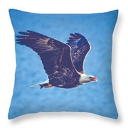 Fly By Eagle. 3 Of 3 Throw Pillow
