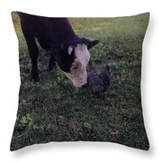 Fly Catcher Throw Pillow