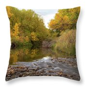 Fly Fishermans Paradise Throw Pillow