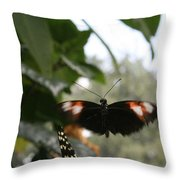 Fly Free - Black, Orange, White Butterfly Throw Pillow