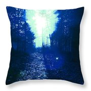 Fly Home, Baby. Throw Pillow