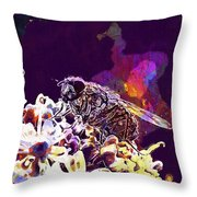 Fly Housefly Insect Close Macro  Throw Pillow