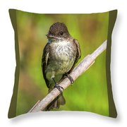 Fly In The Mouth Throw Pillow