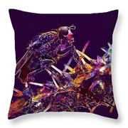 Fly Insect Nature Macro Close  Throw Pillow