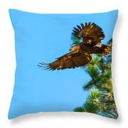Fly Like An Eagle Throw Pillow