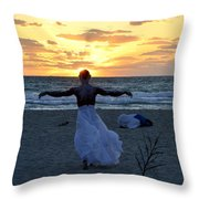 Fly To Sun Throw Pillow