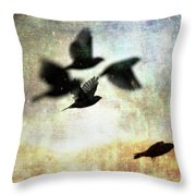 Fly With The Mood Throw Pillow