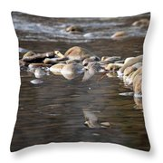 Flycatcher Hunting On The Buffalo River Throw Pillow
