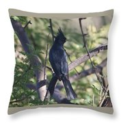 Silky Flycatcher Throw Pillow