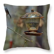 Flying Birds 327 Throw Pillow