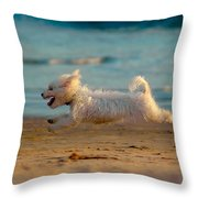 Flying Dog Throw Pillow