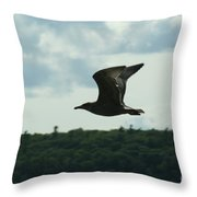 Flying Ephraim Wi Throw Pillow