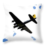 Flying For Home Throw Pillow