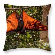 Flying Foxes Throw Pillow