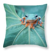Flying Frog Wallace Throw Pillow