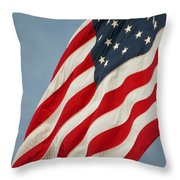 Flying High And Free Throw Pillow